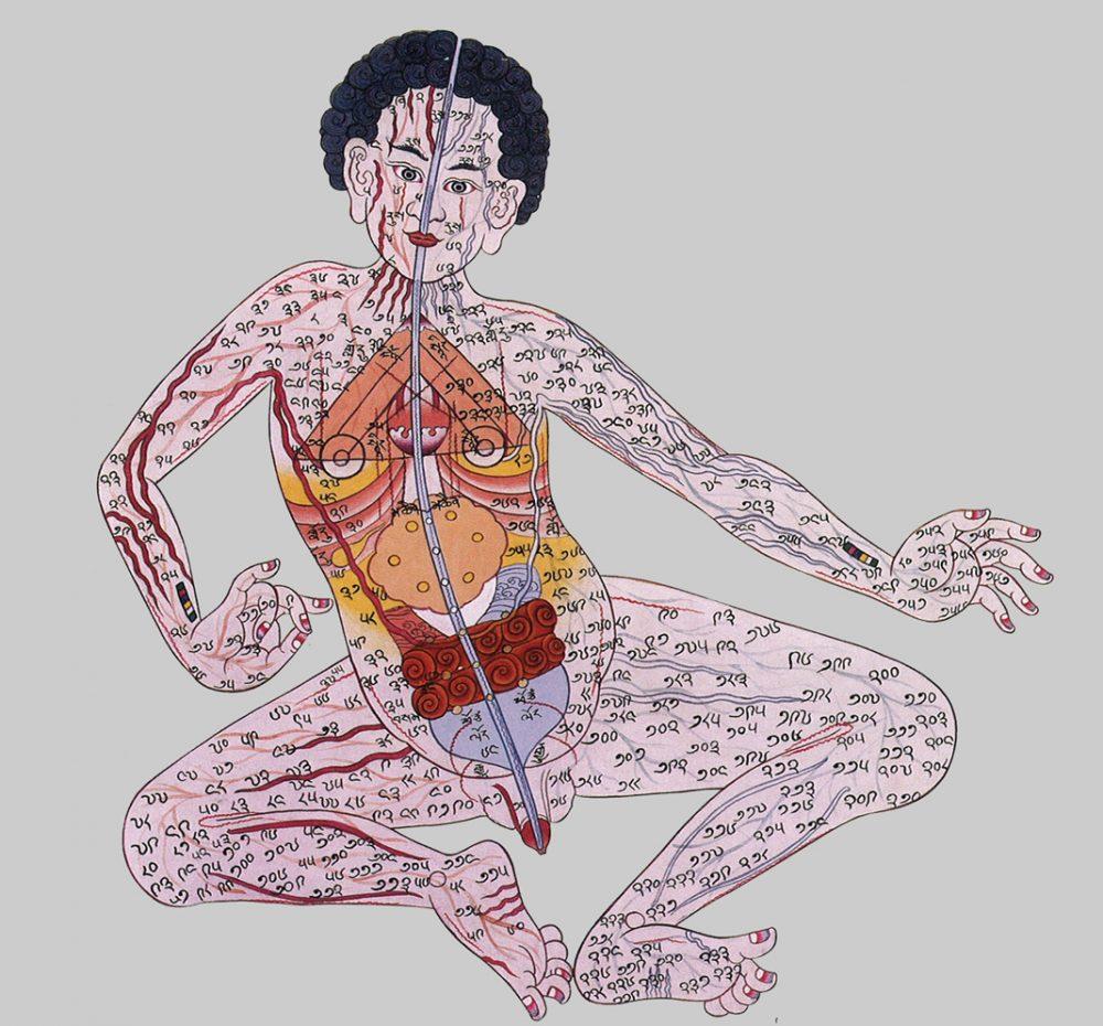 Tibetan Four Tantras Chakra Illustration