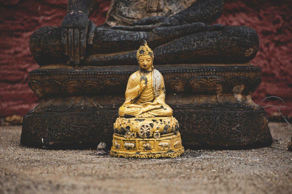 Ananda, Jivaka and Devadatta : Buddha's Entourage - Ep. 164 of the Bob Thurman Podcast Photo by Peter Hershey